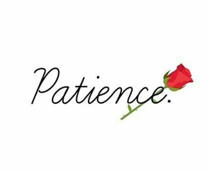 english, mots, and patience image