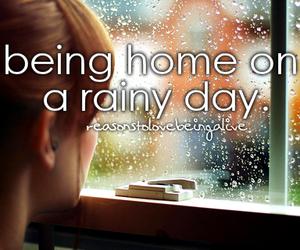 rain, windows, and words image