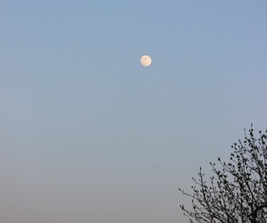 background, moon, and simple image