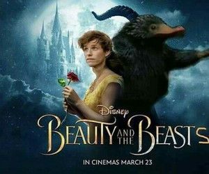 eddie redmayne, funny, and beauty and the beast image