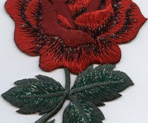 patches and rose image