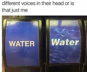 funny, water, and different image
