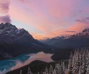 beautiful, feelings, and nature image