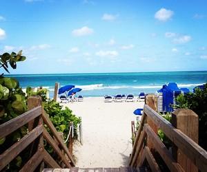 beach and Miami image
