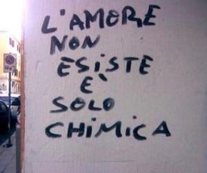 frasi, no love, and citazioni image