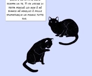 frasi, gatto, and viola image