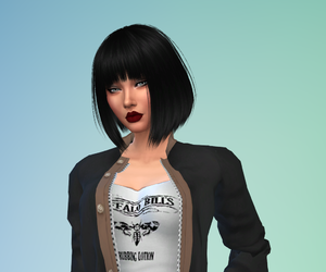 cc, sims, and the sims image