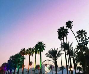 coachella, festival, and california image