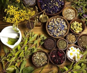 herbs and witch image