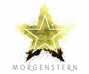 morgenstern and shadowhunters image
