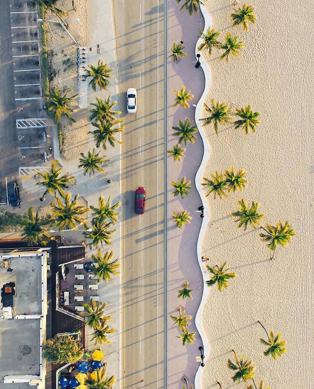 beach, palms, and paradise image