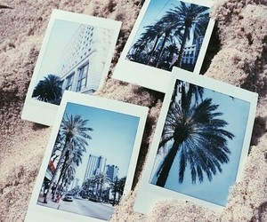 summer, beach, and polaroid image