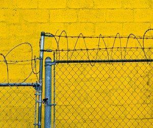Barbed Wire, kevin nance, and yellow wall image