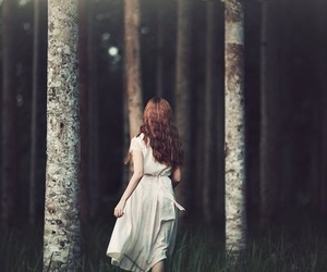 forest, dress, and photography image