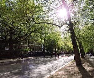 green, london, and st james park image
