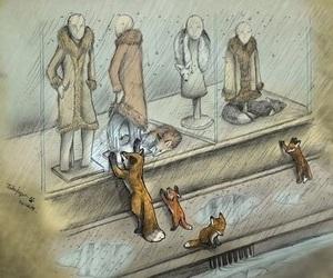 sad, fox, and animal image