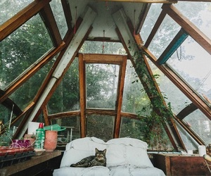 cabin and cat image