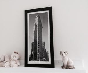 animals, bedroom, and cozy image