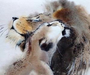animals, lion, and art image