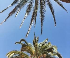 abroad, beach, and beautiful image