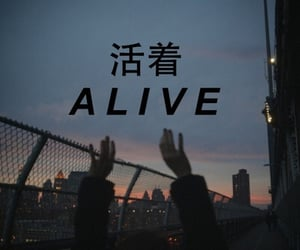 alive, life, and light image