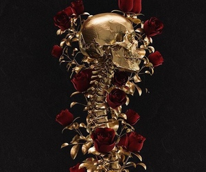 gold, red, and roses image