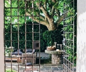 decor, nature, and home image