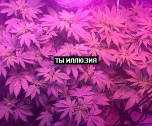 Image by xx_oleksandra_xx