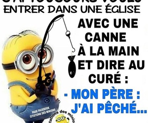 minion and mdrr image