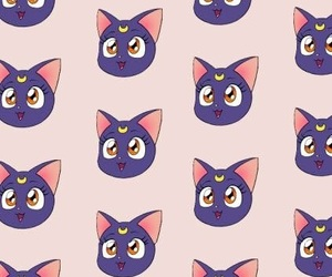 background, pink, and cat image