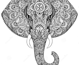 elephant and mandala image
