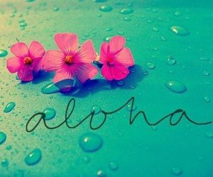 Aloha, flowers, and summer image