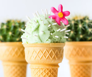 cactus, food, and ice cream image