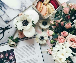 book, flowers, and macaroons image