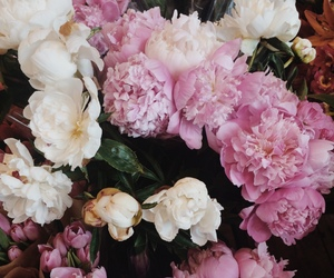 flowers, chic, and beauty image