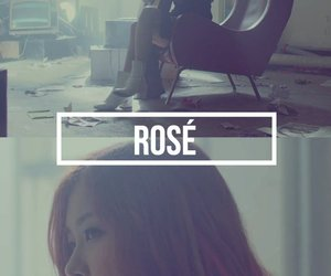 rose, wallpaper, and blackpink image