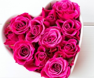 pink, roses, and whi image