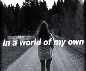 quotes wonderland image