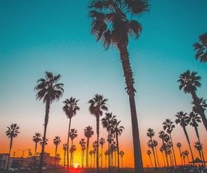 sunset, beautiful, and beauty image