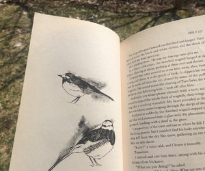 bird, wagtail, and art image