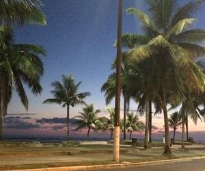 beach, brasil, and 🌴 image