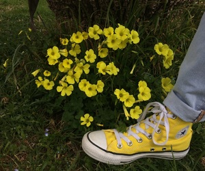 aesthetic, converse, and flower image