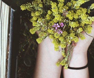 beautiful, depression, and flowers image