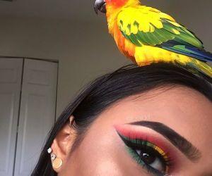 makeup, bird, and highlight image