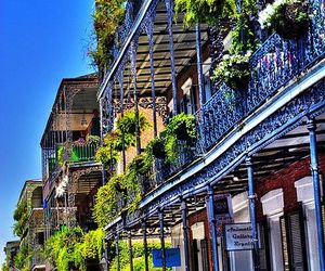 beautiful, new orleans, and The Originals image