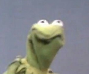 kermit, lol, and reaction image image