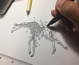 animal, art, and giraffe image