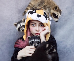 raccoon, nicely, and love image
