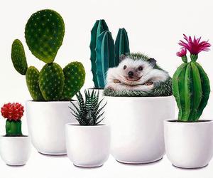 arte, cactus, and surrealismo image