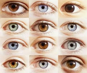 eyes and colour image